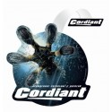 CORDIANT Snow Cross PW-2 195/55R16 Ш. Интернет-магазин Vseinet.ru Пенза